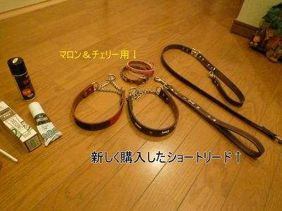 blog4_100141