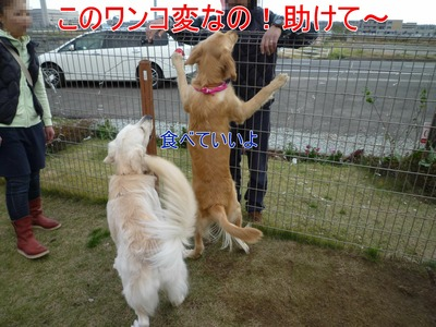 blog6_091123