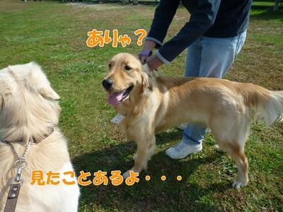 blog4_091019