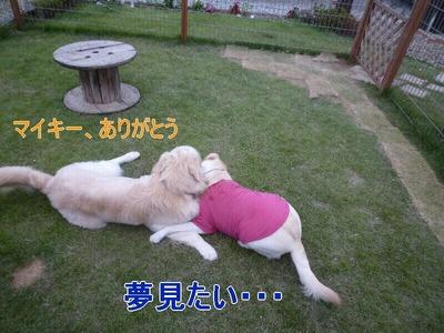 blog4_090927