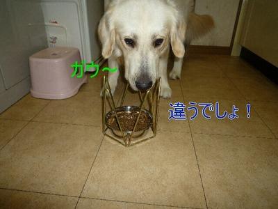 blog3_090825