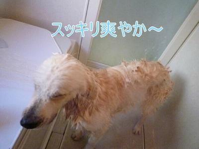 blog3_091227