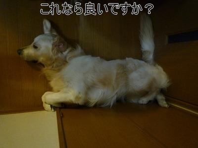 blog2_100326