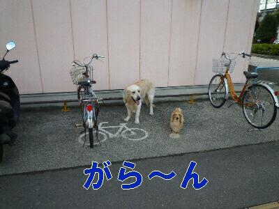 blog3_090830