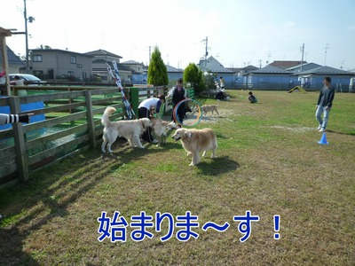 blog10_091019