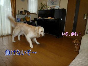 blog1_0808