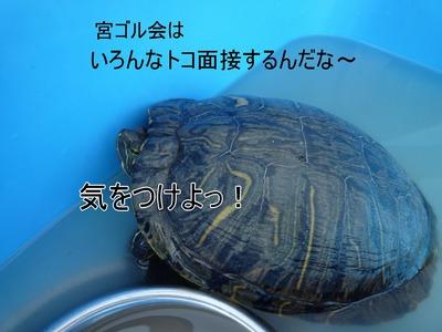 20100718_12