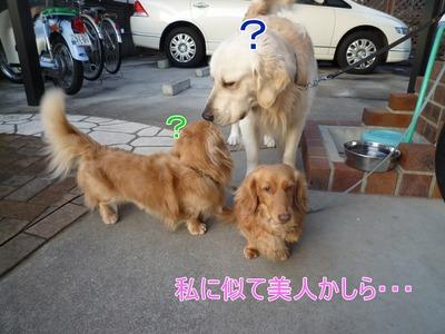blog2_100210