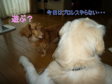 blog2_090809