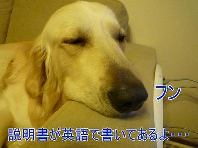 blog4_100407