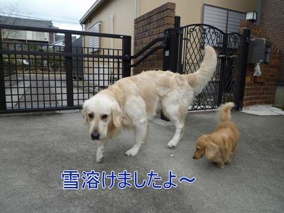 blog1_100314