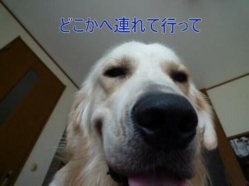 blog1_090815
