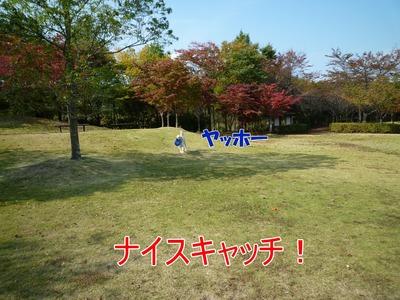 blog3_091020