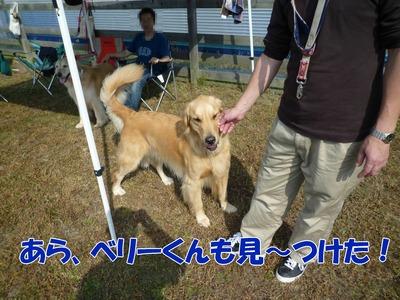 blog8_091019