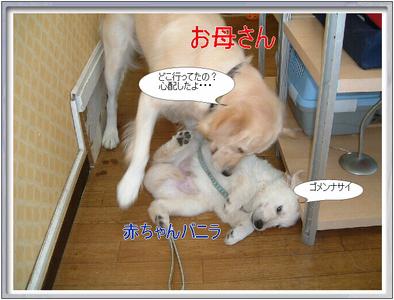 blog1_090823