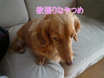 blog4_102019