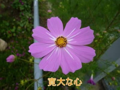blog3_09013