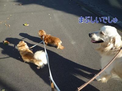 blog1_091118