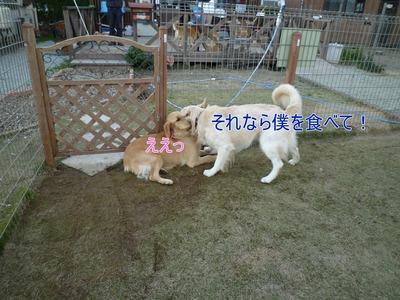 blog5_091123