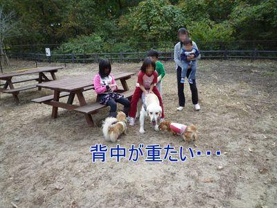 blog5_091026