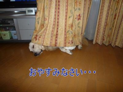 blog4_091027