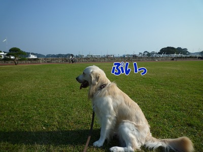 blog1_091021
