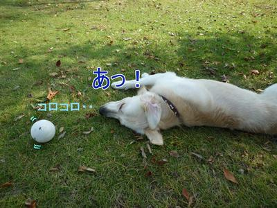 blog4_091018