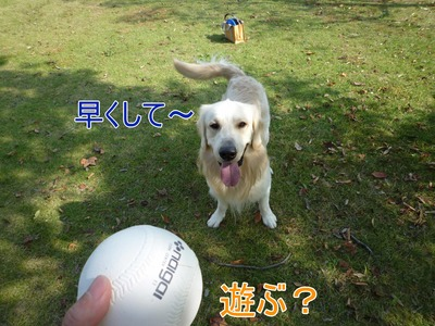 blog2_091018