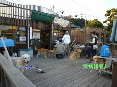 blog11_091123