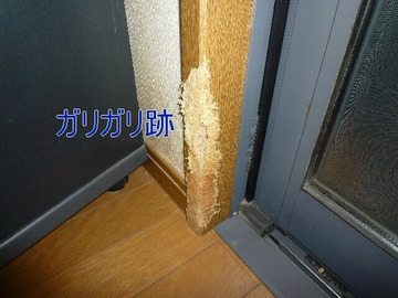 blog3_090804