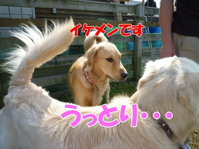 blog9_091019