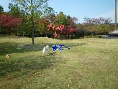 blog2_091020
