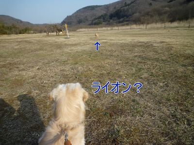 blog6_103022