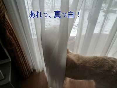 blog2_100220
