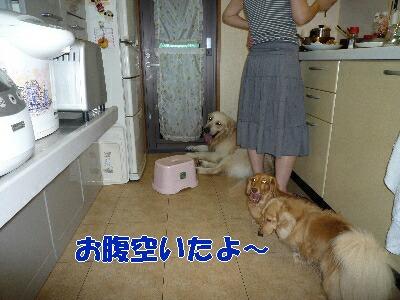 blog4_090830
