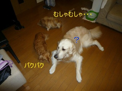 blog3_090822
