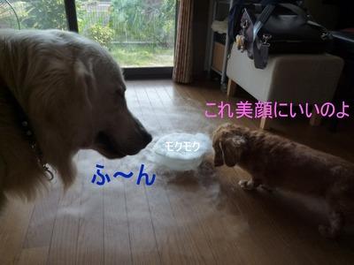 blog3_090929