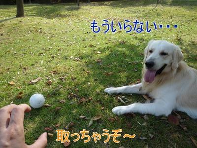 blog6_091018
