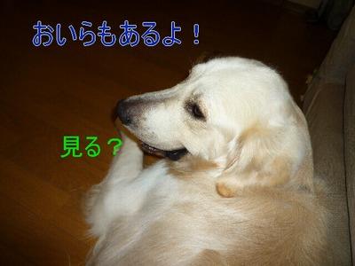 blog3_090824