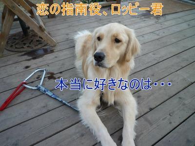 blog7_091123