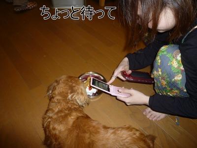 blog6_100420