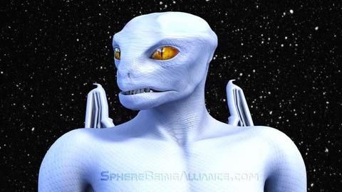 White_Draco_close_up_sm