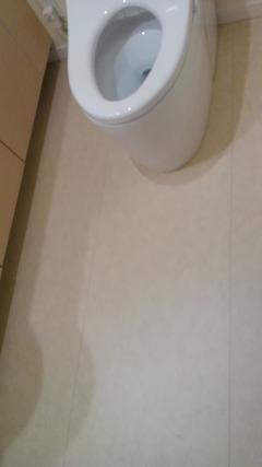 restroom_fault