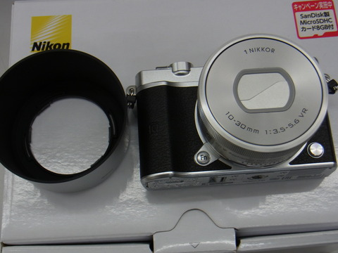 RIMG0101