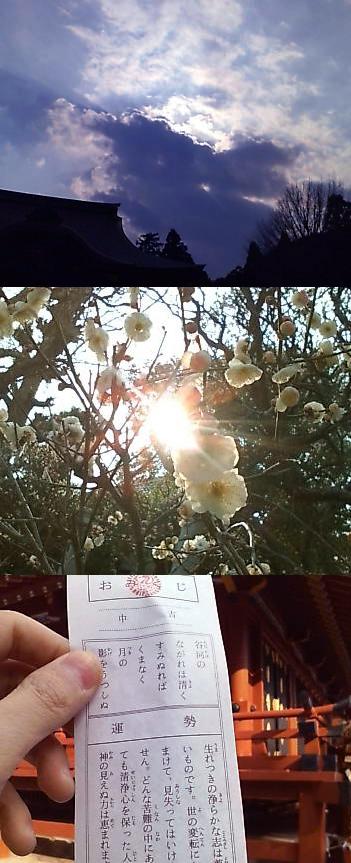 asada hiroyuki.com-omi