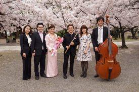 2015年 4月4日 同期の桜 極小