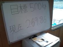 CA3D1043