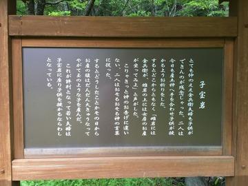 a-kodakara iware