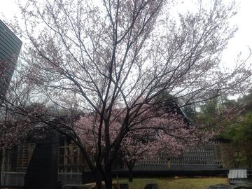 2014-03-26-12-23-04