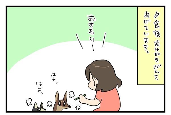 20180612_1